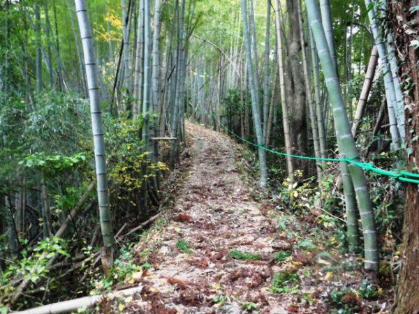 171108_三千坊ロープ (2)圧縮