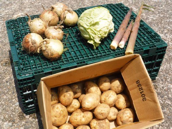 170628_野菜頂き物 (2)