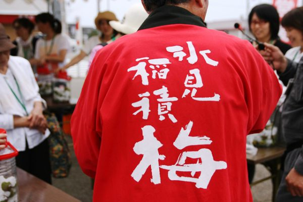 160619_稲積梅 収穫体験(171)